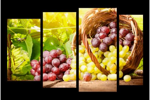 Модульная картина Корзина винограда